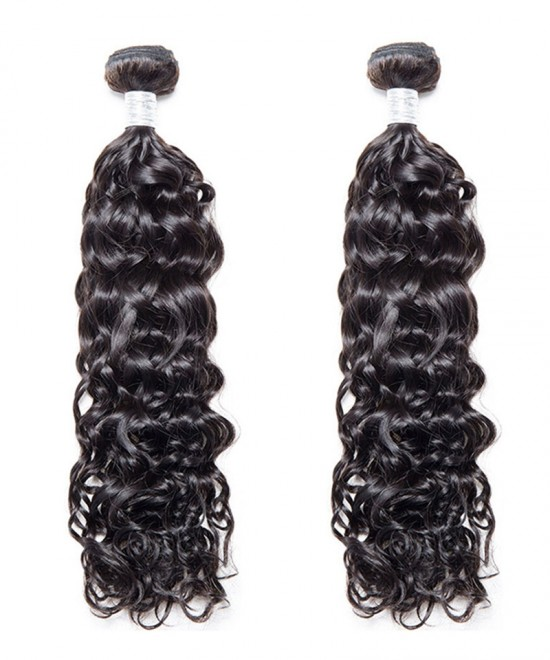 Dolago 2 Pcs Water Wave Brazilian Virgin Hair Bundles Cutile Kept Remy Hair Weaves